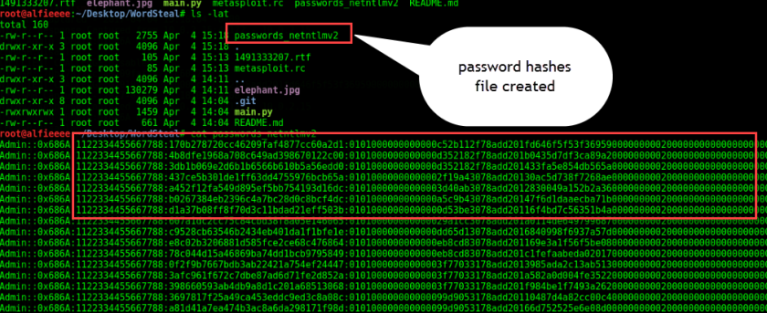 password hashes